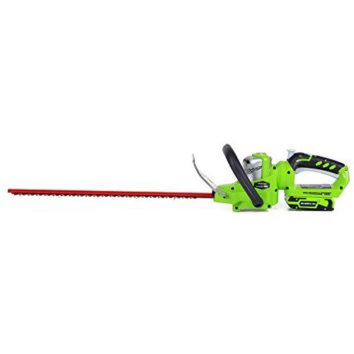 Greenworks G 24V in. Action Trimmer