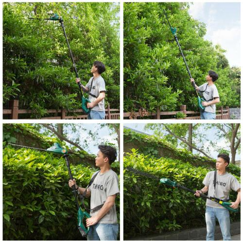 cordless electric 20v 20 extension pole dual